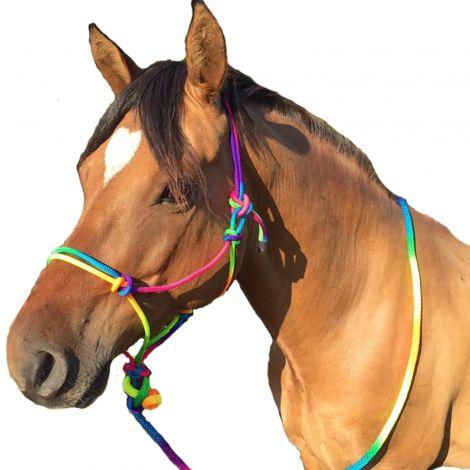 Knotenhalfter Rainbow mit Strick