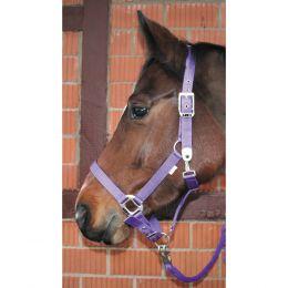 Halfter ELEGANCE unterlegt purple lila Pony