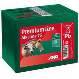 Alkaline Trockenbatterie 9 Volt 55Ah