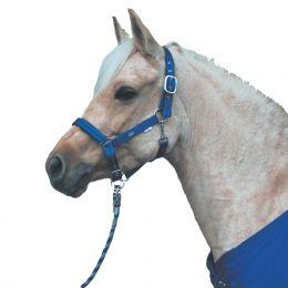 Halfter No 8 Glückshalfter in royalblau braun unterlegt Pony