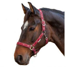 Halfter Pferdemotiv